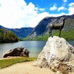 Slovenia per i bambini, il Camoscio d'oro del Lago di Bohinj