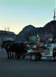 Carrozza con cavalli per salire al Castello di Neuschwanstein