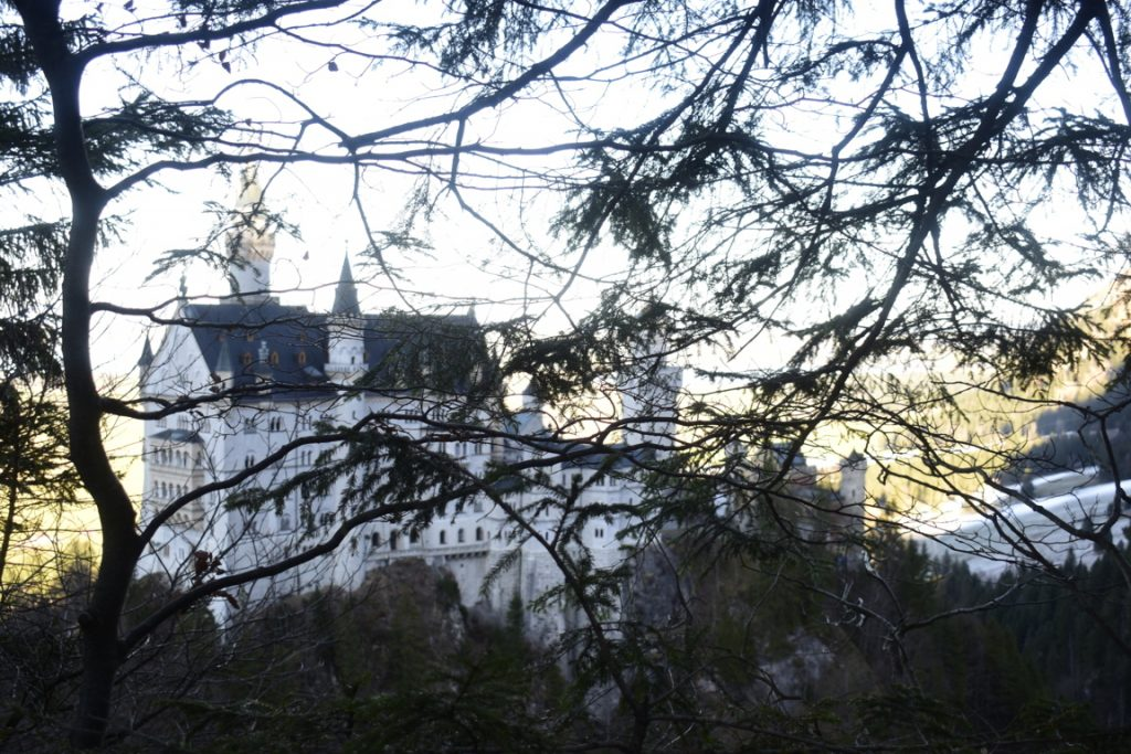 Il Castello di Neuschwanstein tra i boschi