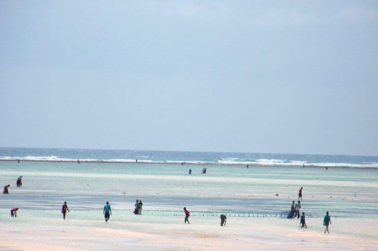 Curiosità Zanzibar: 12 cose che forse non sai sull'Isola delle Spezie