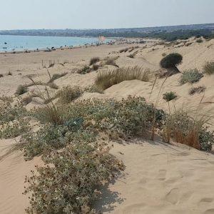 Le spiagge di Ragusa, le dune di Sampieri