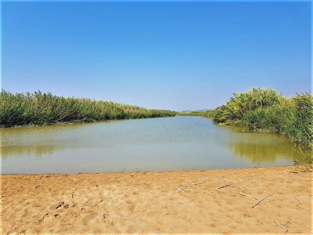 Un pantano di acqua dolce dietro la spiaggia di Eloro a nella Riserva Naturale di Vendicari