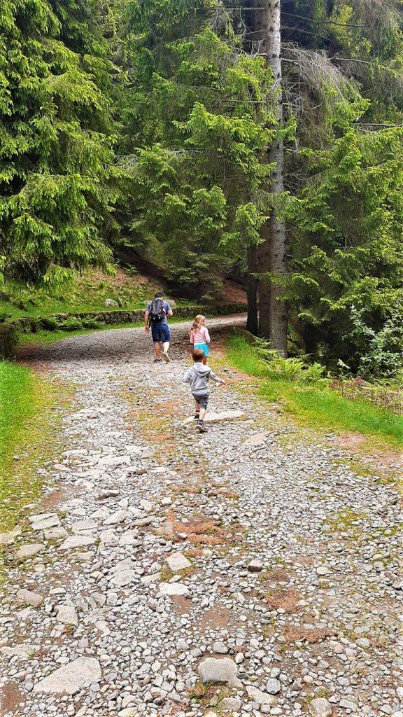 il cammino di San Bernardo Oasi Zegna
