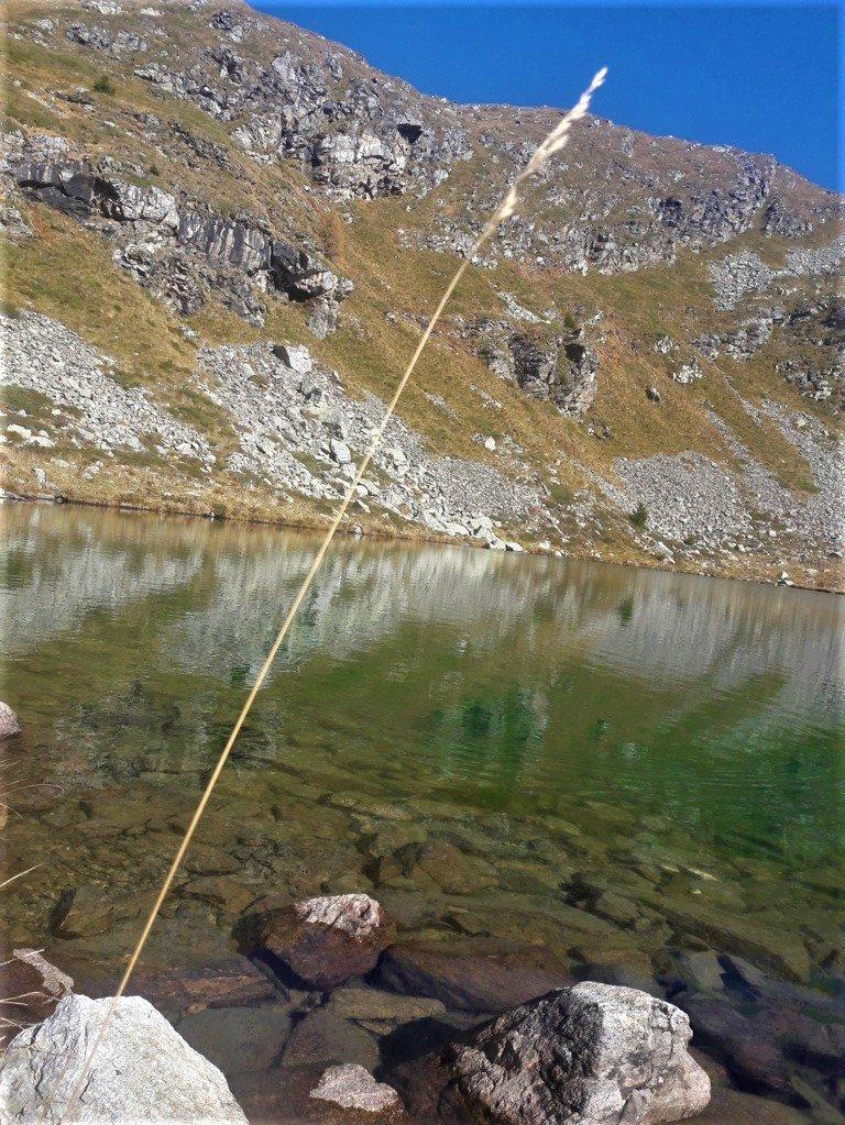 dettaglio del Lago delle Trote a Foppolo in Alta Val Brembana