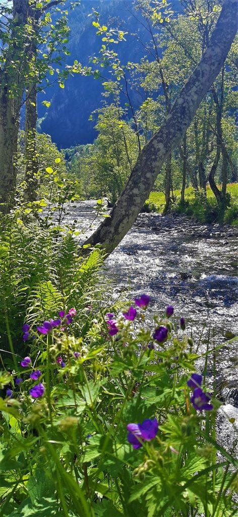 la natura in Val di Mello