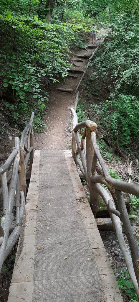 Ponte in legno del Sentiero Spirito del Bosco di Canzo
