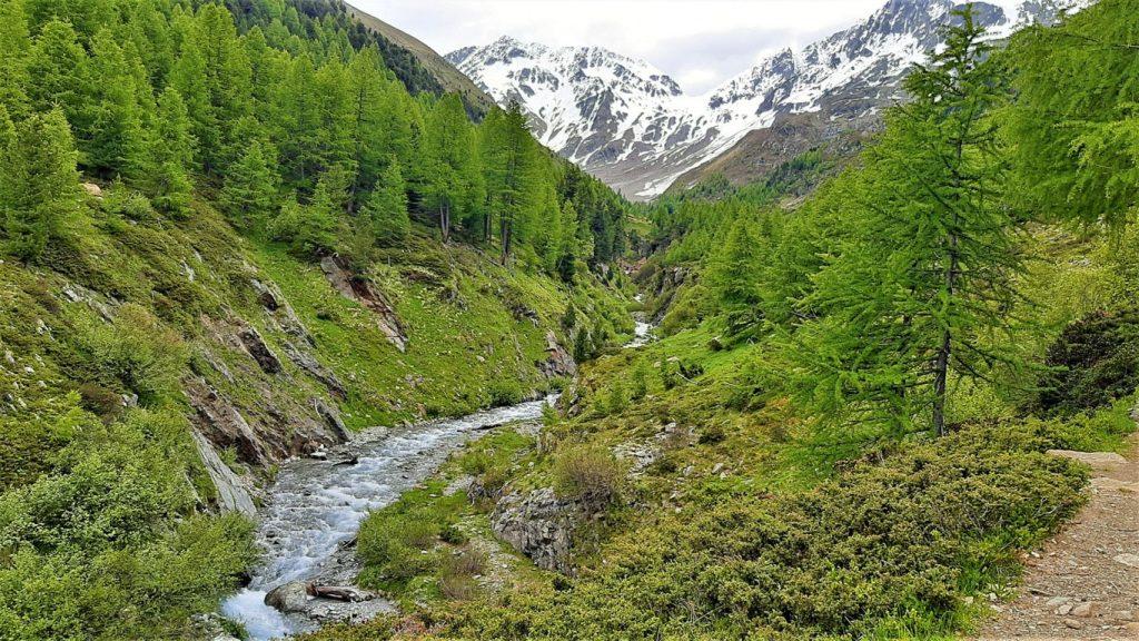 il sentiero tra i boschi della cascata della Val Nera