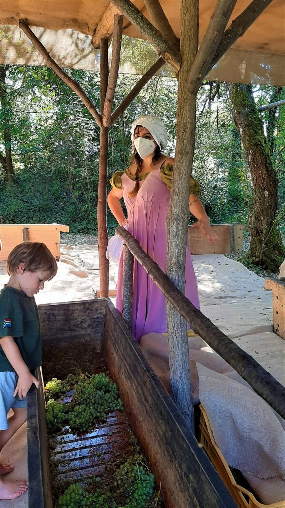 bambino si prepara per la pigiatura dell'uva al Castello di Gropparello