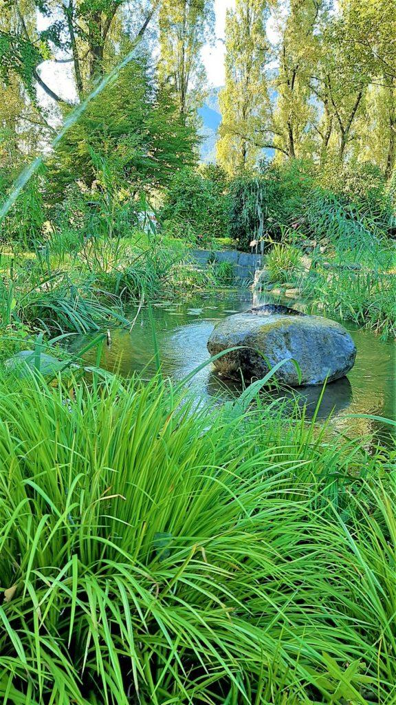 un laghetto del Parco delle Camelie a Locarno