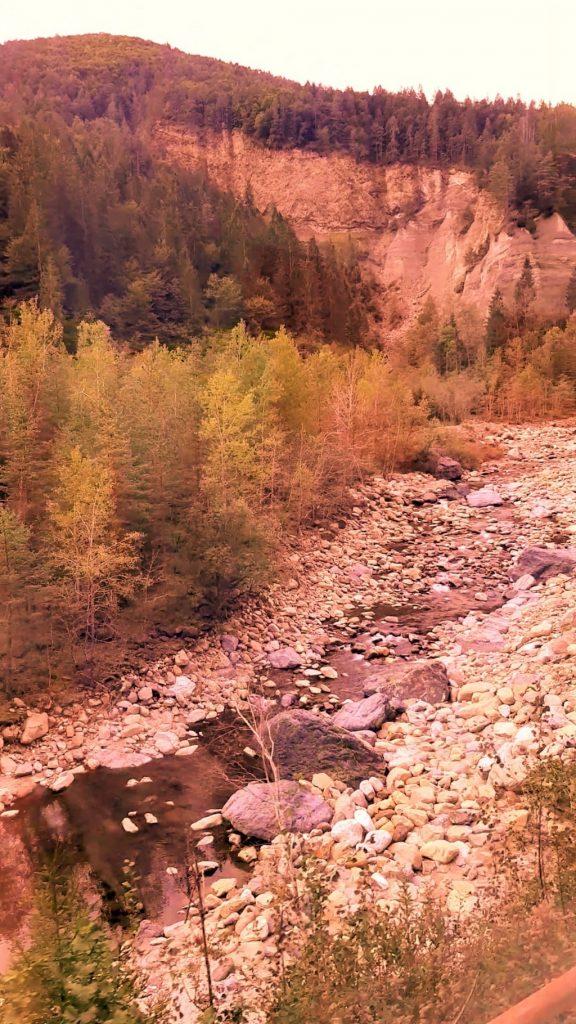 un torrente tra i boschi della Val Vigezzo