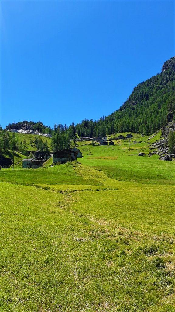 Gli alpeggi di Campo Franscia
