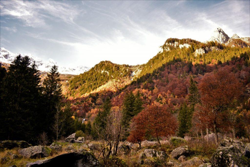 Gli alberi con le foglie colorate dal foliage autunnale in Val Masino