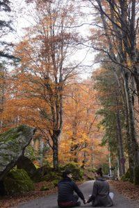 coppia sulla strada asfaltata immersa nel foliage dell'autunno in Valtellina