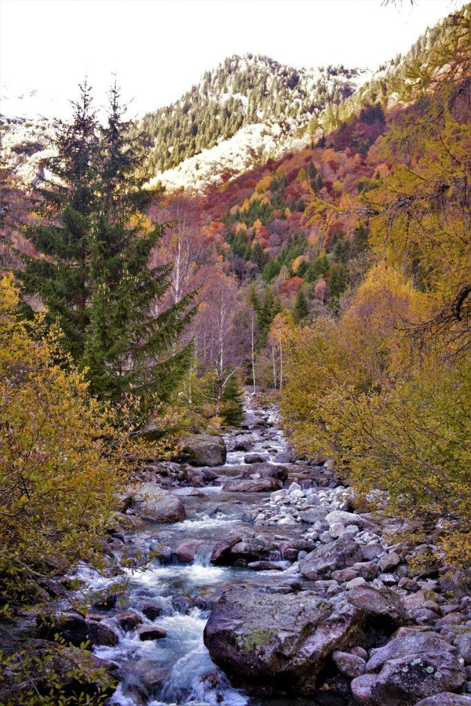 Il torrente Masino che scorre in Val Masino in mezzo ai colori dell'autunno
