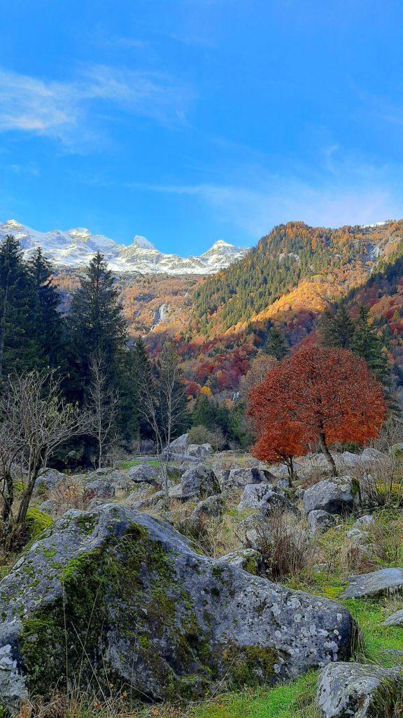 la valle con i sassi granitici dei Bagni di Masino in autunno