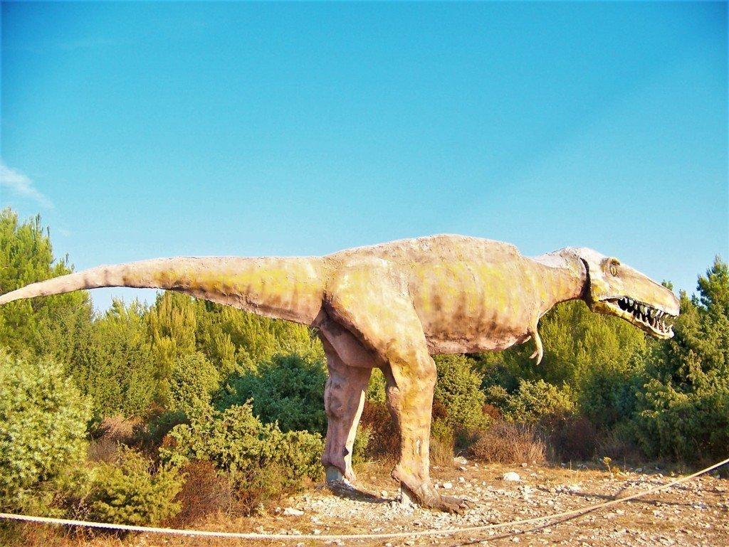 dinosauro lungo il sentiero di Kamenjak a Premantura