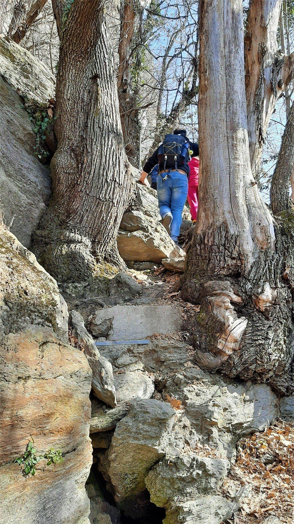 Il sentiero panoramico per Savogno a Piuro