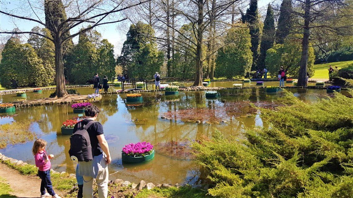 Un laghetto del Parco Giardino Sigurtà