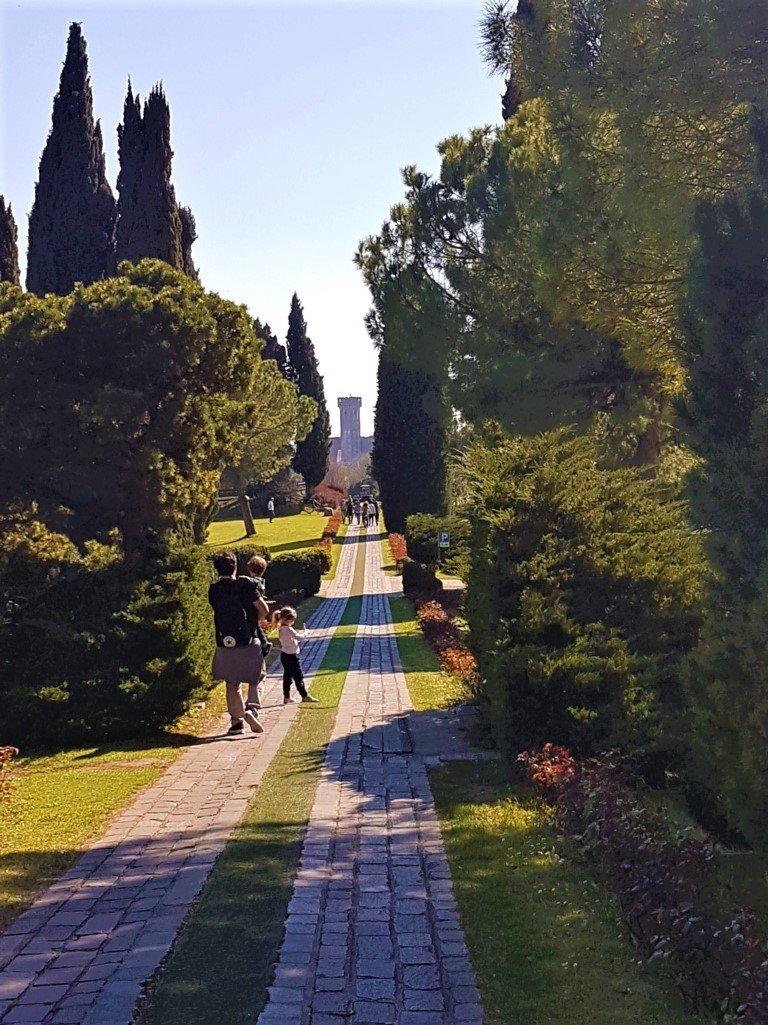 Il Viale delle Rose al Parco Sigurtà