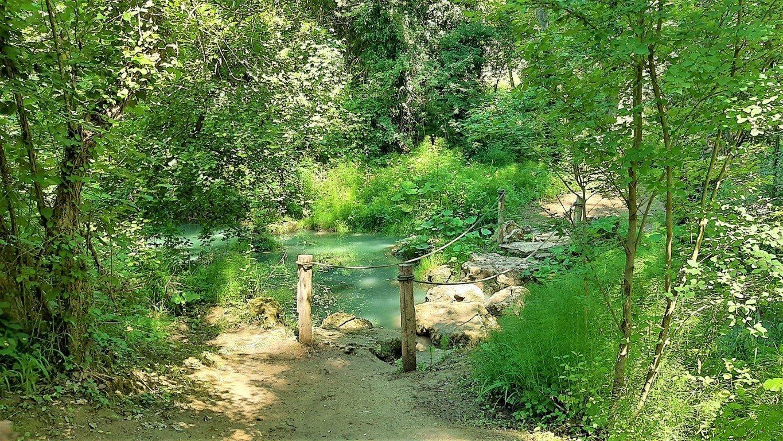 Un tratto del Sentierelsa Trail