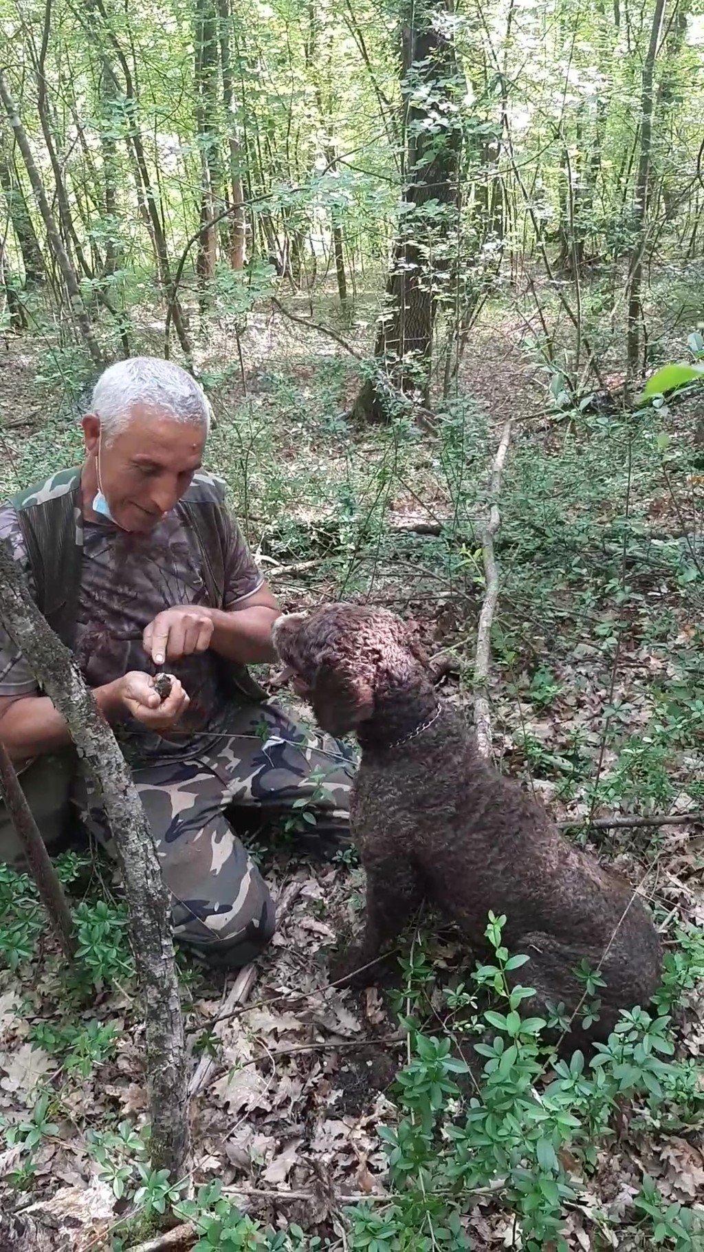 La caccia al tartufo nelle campagne della Toscana