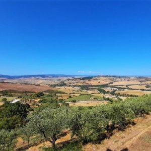 Le colline toscane di Montepulciano e dintorni