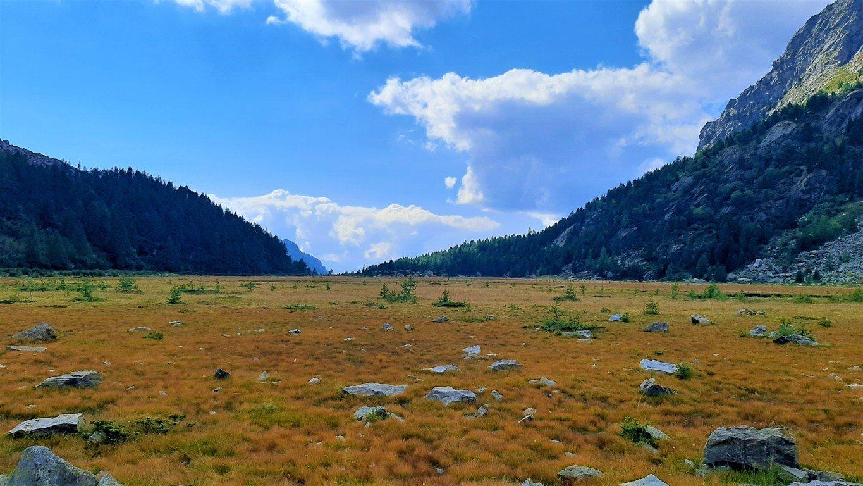 La piana di Preda Rossa in Val Masino in autunno